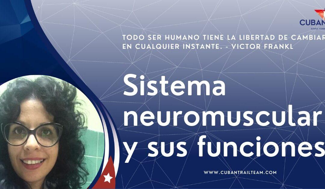 Las funciones del sistema neuromuscular
